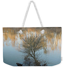 Weekender Tote Bag featuring the photograph Flint River 24 by Kim Pate