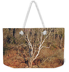 Weekender Tote Bag featuring the photograph Flint River 25 by Kim Pate