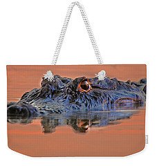 Alligator For Florida  Weekender Tote Bag by Luana K Perez