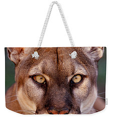 Florida Panther Weekender Tote Bag by Tom and Pat Leeson
