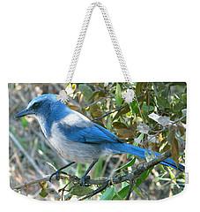 Florida Scrub Jay Weekender Tote Bag