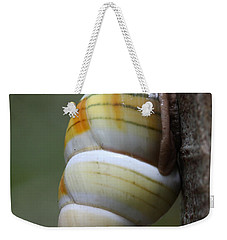 Weekender Tote Bag featuring the photograph Florida Tree Snail by Paul Rebmann