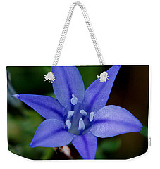 Flower From Paradise Lost Weekender Tote Bag by Kim Pate