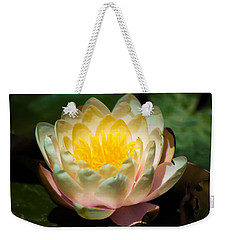 Flower On A Lilly Pad Weekender Tote Bag by Naomi Burgess