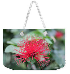 Weekender Tote Bag featuring the photograph Fluffy Pink Flower by Sergey Lukashin