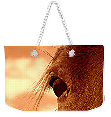 Fly In The Eye Weekender Tote Bag by Clare Bevan