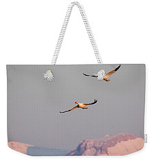 Weekender Tote Bag featuring the photograph Flying High by Jack Bell