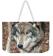 Weekender Tote Bag featuring the photograph Focused by Gary Slawsky