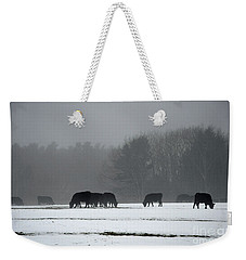 Weekender Tote Bag featuring the photograph Foraging by Glenn Gordon
