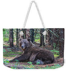 Forest Bear Weekender Tote Bag by Chris Scroggins
