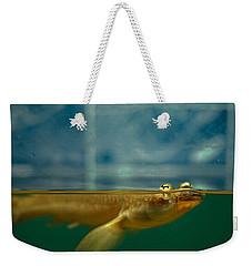 Four Eyes Weekender Tote Bag