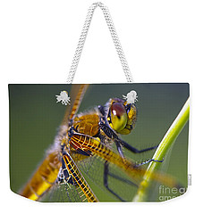 Four Spotted Chaser Weekender Tote Bag