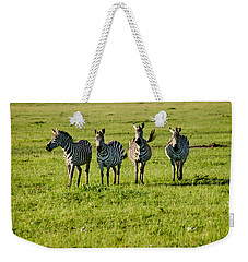 Four Zebras Weekender Tote Bag by Menachem Ganon