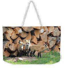 Fox Kits Weekender Tote Bag