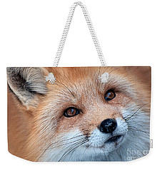 Weekender Tote Bag featuring the photograph Foxy Lady by Bianca Nadeau