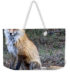 Foxy Lady  Weekender Tote Bag by Fiona Kennard
