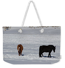 Free Spirits Weekender Tote Bag by Fiona Kennard