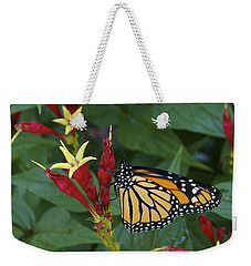 Freed - A Newly Emerged Monarch Weekender Tote Bag by Jane Eleanor Nicholas