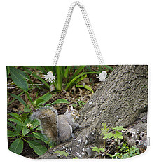 Weekender Tote Bag featuring the photograph Friendly Squirrel by Marilyn Wilson
