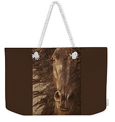 Friesian Spirit Weekender Tote Bag