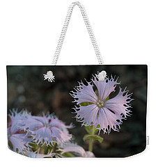 Weekender Tote Bag featuring the photograph Fringed Catchfly by Paul Rebmann