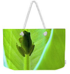 Weekender Tote Bag featuring the photograph Frog In Blankie by Faith Williams