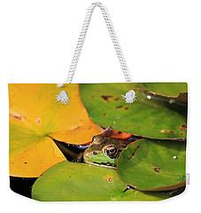 Frog Pond 3 Weekender Tote Bag