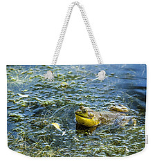 Frog Song Weekender Tote Bag