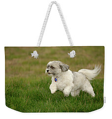 Weekender Tote Bag featuring the photograph Frollic by Arthur Fix