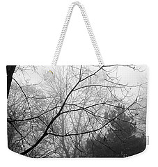 Weekender Tote Bag featuring the photograph From Hence We Come by Robyn King