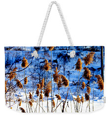 Weekender Tote Bag featuring the photograph Fronds In Winter by Eleanor Abramson
