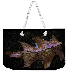 Weekender Tote Bag featuring the photograph Frosted Oak by Tikvah's Hope