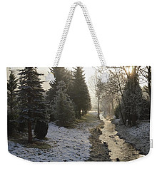 Weekender Tote Bag featuring the painting Frozen Light by Felicia Tica