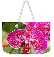 Fuchsia Moth Orchid Weekender Tote Bag by Rona Black