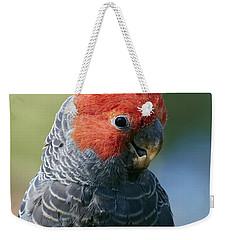 Gang-gang Cockatoo Male Canberra Weekender Tote Bag