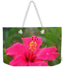 Weekender Tote Bag featuring the photograph Garden Rains by Miguel Winterpacht