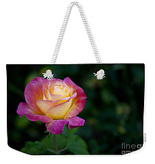 Weekender Tote Bag featuring the photograph Garden Tea Rose by David Millenheft