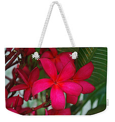 Weekender Tote Bag featuring the photograph Garden Treasures by Miguel Winterpacht