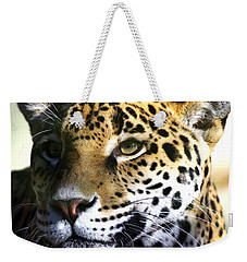 Gazing Jaguar Weekender Tote Bag