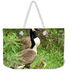 Geese And Gosling Weekender Tote Bag by Kim Pate