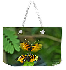 Weekender Tote Bag featuring the photograph Gentle Butterfly Courtship 03 by Thomas Woolworth