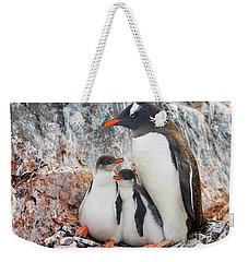 Gentoo Penguin Family Booth Isl Weekender Tote Bag by Yva Momatiuk and John Eastcott