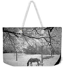 Weekender Tote Bag featuring the photograph Georgia Horses by Bradley R Youngberg