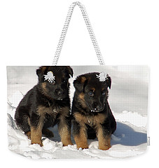 German Shepherd Pups Weekender Tote Bag by Aimee L Maher Photography and Art Visit ALMGallerydotcom