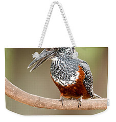 Giant Kingfisher Megaceryle Maxima Weekender Tote Bag by Panoramic Images
