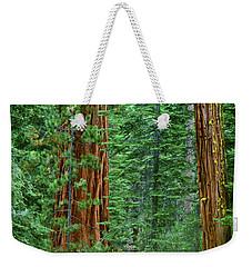 Giant Sequoias Sequoiadendron Gigantium Yosemite Np Ca Weekender Tote Bag