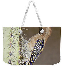 Weekender Tote Bag featuring the photograph Gila Woodpecker by Deb Halloran