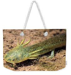 Gills Weekender Tote Bag