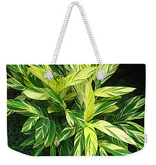 Ginger Lily. Alpinia Zerumbet Weekender Tote Bag by Connie Fox