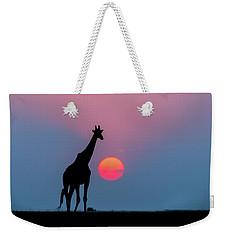 Giraffe At Sunset Chobe Np Botswana Weekender Tote Bag by Andrew Schoeman